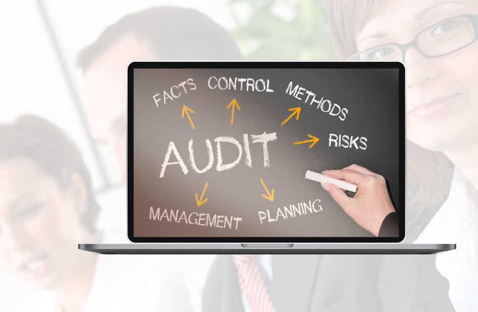 Privacy Software Audits